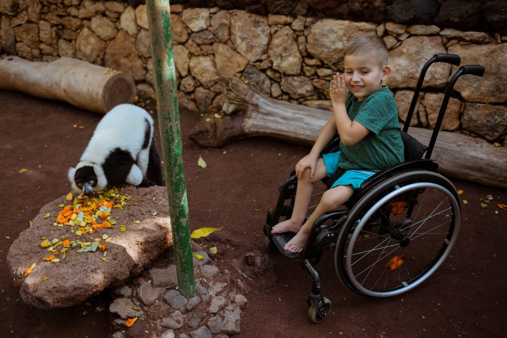 Oasis Park Fuerteventura – #wakacjebezprzeszkod